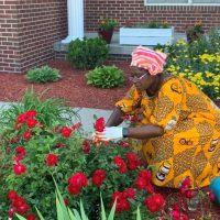 Picking Roses From My Flower Garden