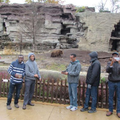 Detroit Zoo In Front Of The Grizzly Bears