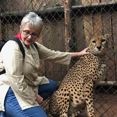 Stanley Cheetah