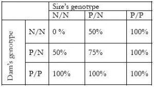 Valberg-sires-genotype