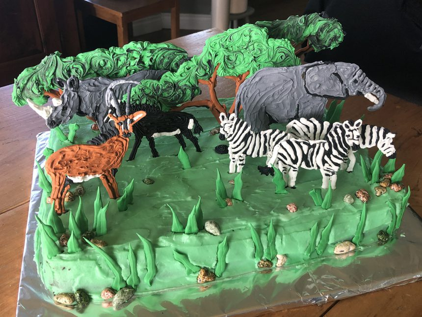 South Africa Cake