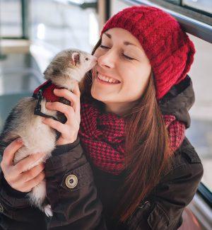04 Ferret Lady