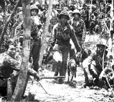 10 1St Marine War Dog Platoon