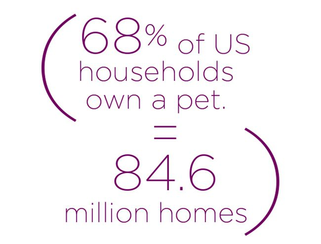 04 68 Percent Of Us Households Own Pet
