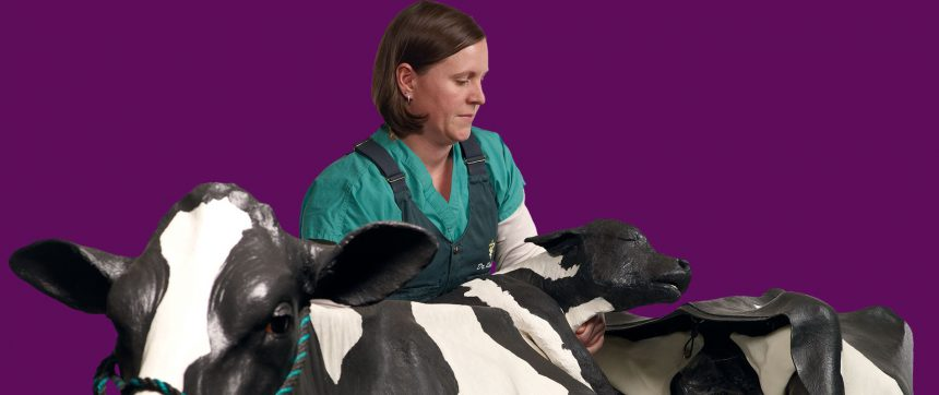 Jen Roberts With Mootilda The Simulation Cow