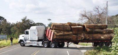 Truck In Road