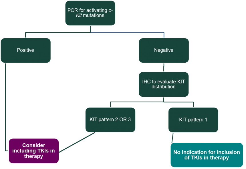 Considerations For Inclusion Of Tyrosine Kinase Inhibitors Tkis In Dogs Being Treated Systemically For A Cutaneous Mast Cell Tumor