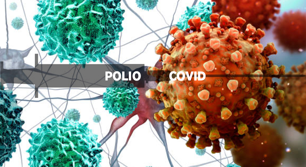 image of Polio and Covid viruses under a microscope