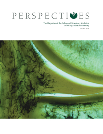 Sparty riding horse, Perspectives 2015 cover